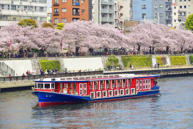 春の浅草と屋形船
